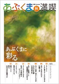 2008_autumn