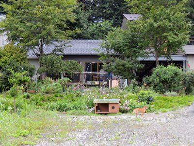 木々のささやきが聞こえる農家民宿「秋元」(川内村)を訪ねました。