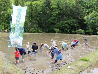 里山体験を通して交流人口の拡大を やまつり清流の里協議会(矢祭町)